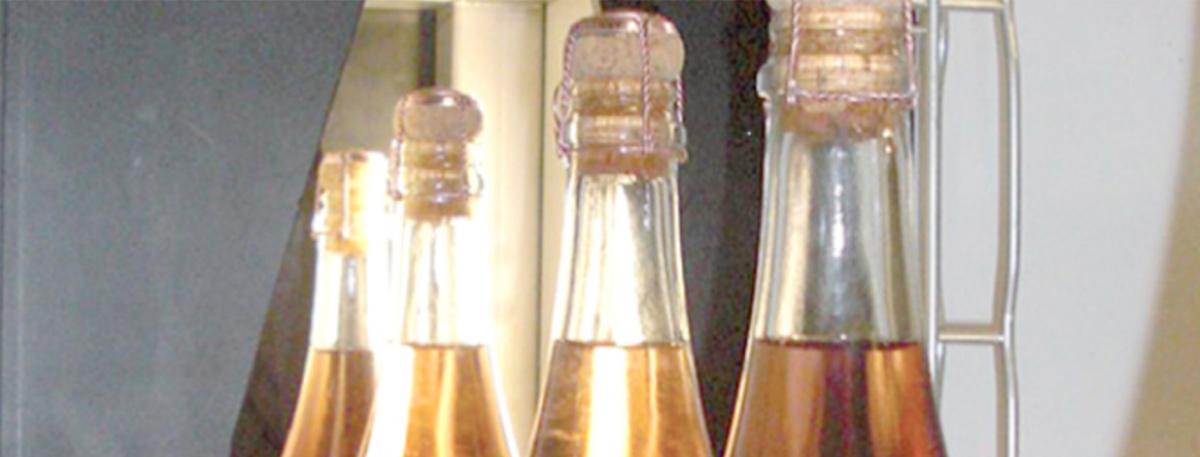 nos-solutions-vinicoles_controles-par-vision-des-bouteilles
